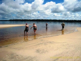 swimming-on-a-sandbarb